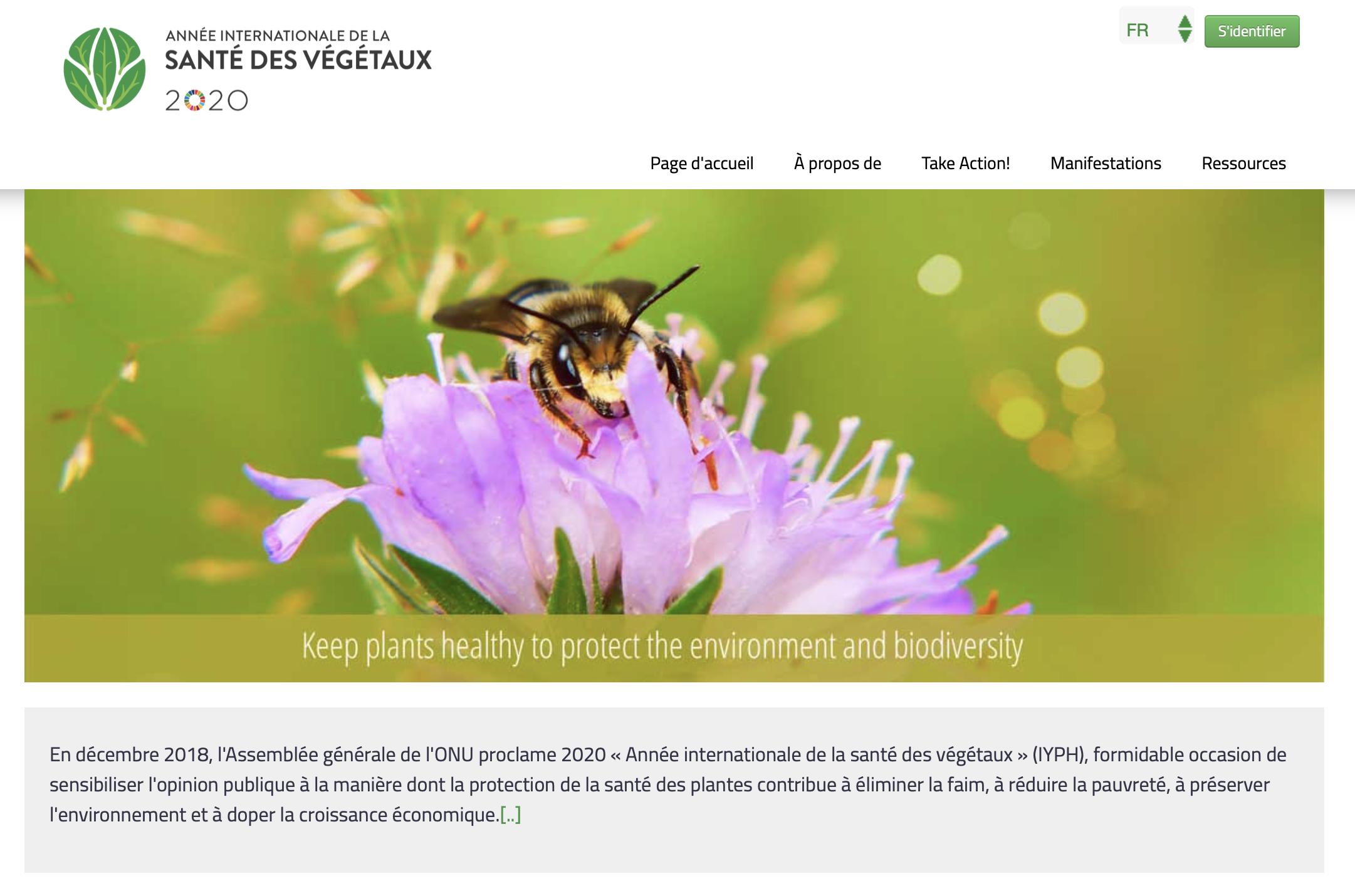 Site Internet de l'Année internationale de la santé des Végétaux
